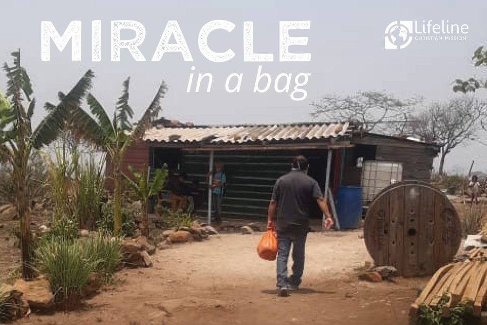 Miracle in a bag